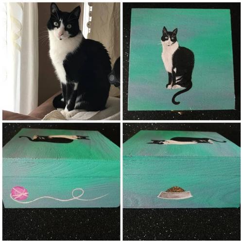 Cajita basada en foto de gatito